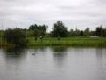 Fiskdag_2006_22.jpg