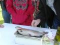 Fiskdag_2006_30.jpg